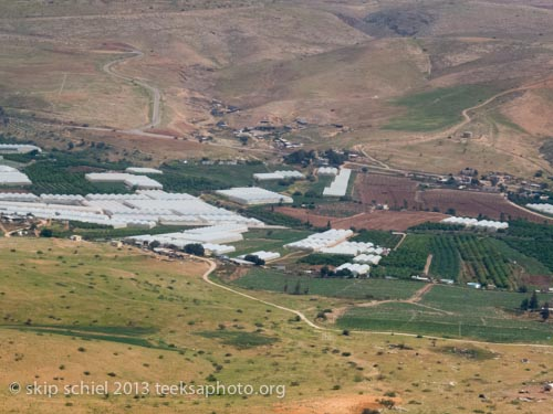 Israeli greenhouses and orchard