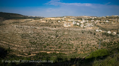 Palestine-Israel-Battir-Terraces-5150