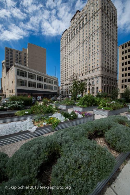 Detroit-Urban_agriculture-9397
