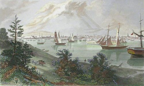 The_City_of_Detroit_(from_Canada_Shore) Steel engraving 1872