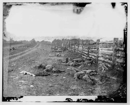 Civil WarConfederate Dead by a Fence on the Hagerstown Road - Antietam, MD, September 1862