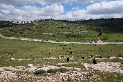 Palestine_Israel-Nabi_Salih-Tamimi-Popular_Resistance-6609