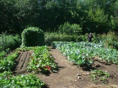 Agape Garden-3 SM.jpg