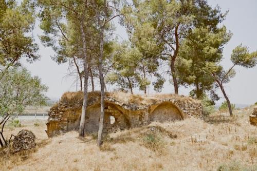 Zochrot Deborah Bright : Qula, near Lydd (Lod), 2010 ADJ SM