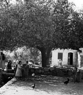 Deir Yassin, 1930
