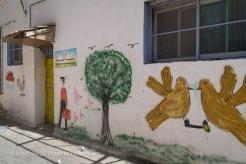 Their kindergarten