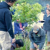 Tree Planting Memorial