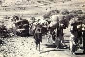Palestinian refugees, 1947